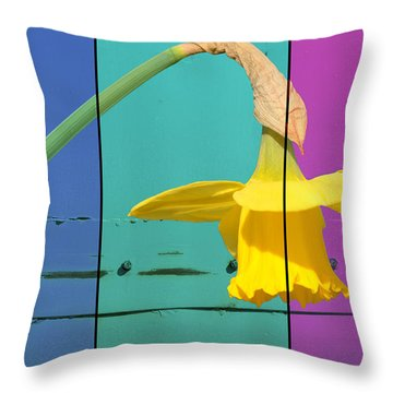 Colour Blocking Spring Throw Pillow by Lisa Knechtel