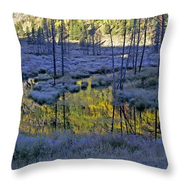 Throw Pillow featuring the photograph Colour Palette by Jeremy Rhoades