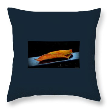 Throw Pillow featuring the photograph Colourfull End by Marija Djedovic