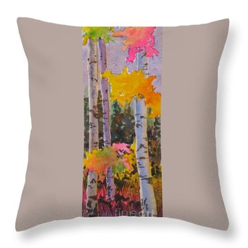 Colours Of The Rainbow Throw Pillow by Mohamed Hirji