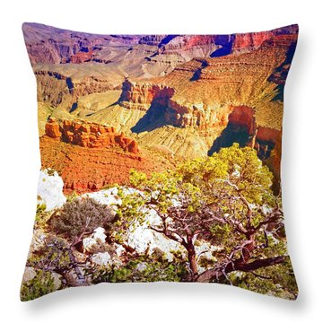 Colours Within The Canyon Throw Pillow by Tara Turner