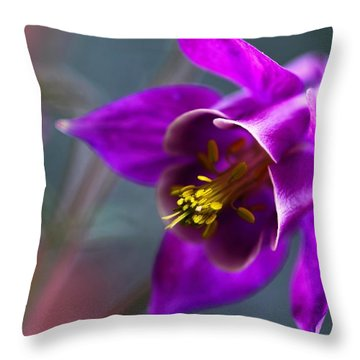 Columbine Abstract Throw Pillow by Katherine White