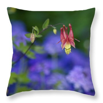 Throw Pillow featuring the photograph Columbine And Verbena by Jane Eleanor Nicholas
