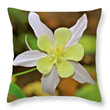 Columbine Charlie's Garden Throw Pillow by Ed  Riche