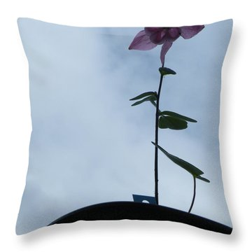 Throw Pillow featuring the photograph Columbine Climb by Brian Boyle