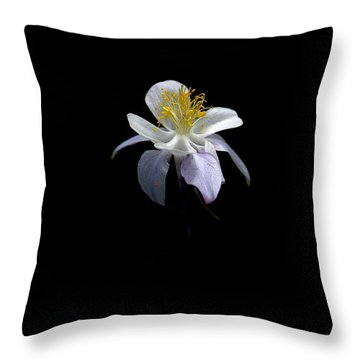 Throw Pillow featuring the photograph Columbine by David Andersen