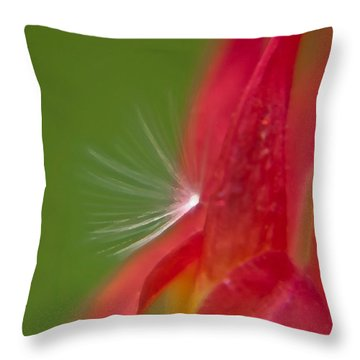 Columbine Fairy Throw Pillow