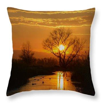 Colusa Wildlife Refuge Sunset Throw Pillow