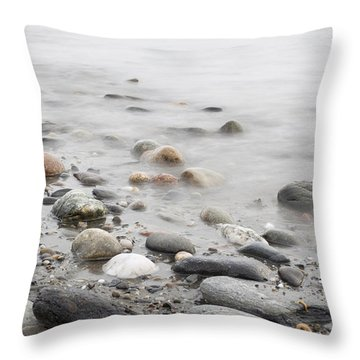 Throw Pillow featuring the photograph Combing The Beach by Andrew Pacheco