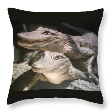 Throw Pillow featuring the photograph Florida Alligators Come Closer by Belinda Lee