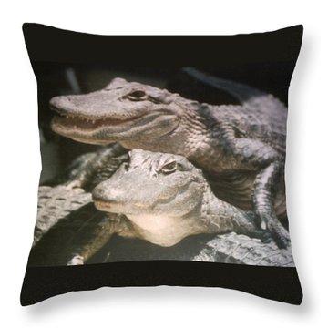 Florida Alligators Come Closer Throw Pillow by Belinda Lee