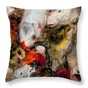 Come On In The Water Is Great Throw Pillow by Wilma  Birdwell