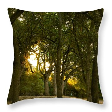 Come Sit Awhile Throw Pillow by Michele Myers