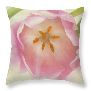 Come To Me Throw Pillow by A New Focus Photography