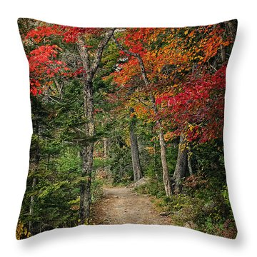 Throw Pillow featuring the photograph Come Walk With Me by Priscilla Burgers