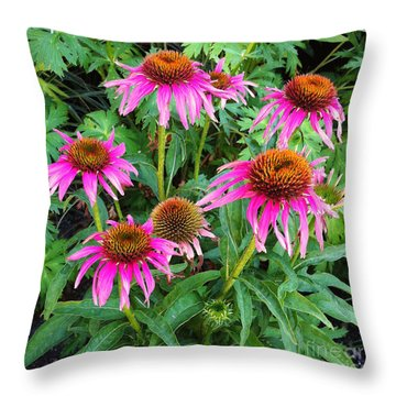 Throw Pillow featuring the photograph Comely Coneflowers by Meghan at FireBonnet Art