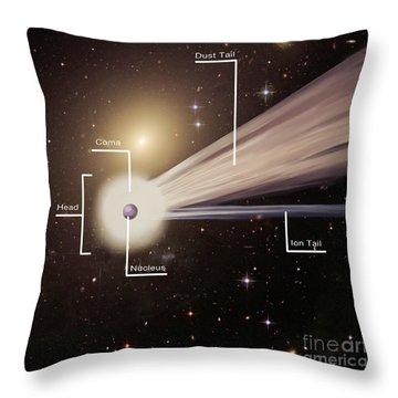 Info Graphic Throw Pillows