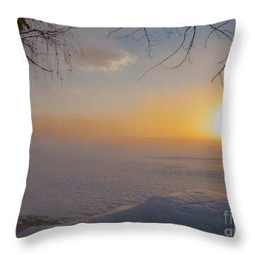 Throw Pillow featuring the photograph Comfortable Winter View by Rose-Maries Pictures