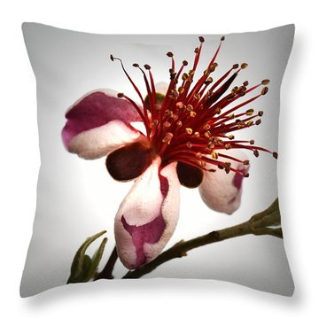 Comic Face Of Feijoa Throw Pillow