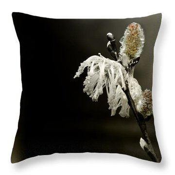 Coming Clean Throw Pillow