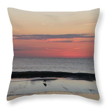 Throw Pillow featuring the photograph Coming Dawn by Robert Banach
