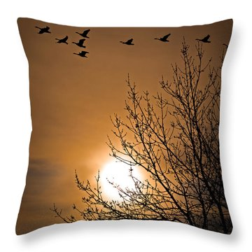 Coming Home In The Spring Throw Pillow by Bob Orsillo