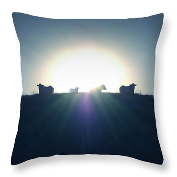 Coming Home Throw Pillow by Mike McGlothlen