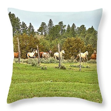 Coming In At A Lope Throw Pillow