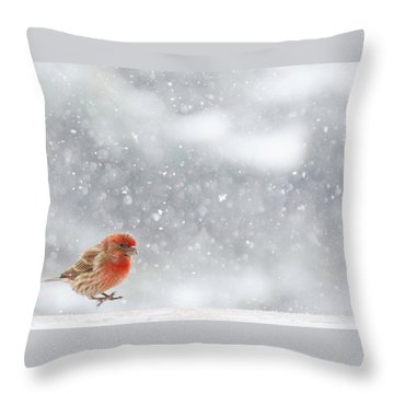Coming In For A Landing Throw Pillow by Diane Alexander