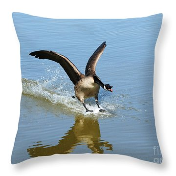 Coming In For A Landing Throw Pillow by Vivian Christopher