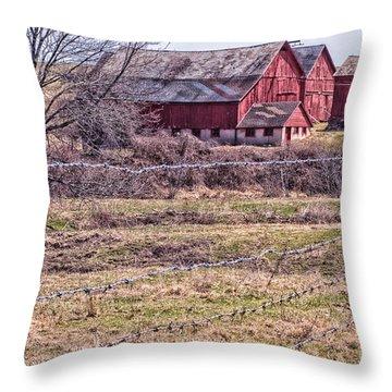 Coming Into Spring  Throw Pillow
