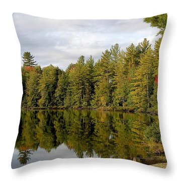 Coming Throw Pillow by Joseph Yarbrough