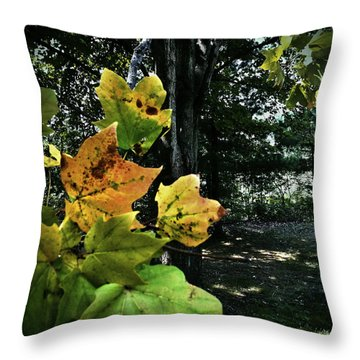 Coming Of Fall Throw Pillow