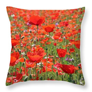 Commemorative Poppies Throw Pillow