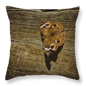 Throw Pillow featuring the photograph Common Buckeye With Torn Wing by Lynn Palmer
