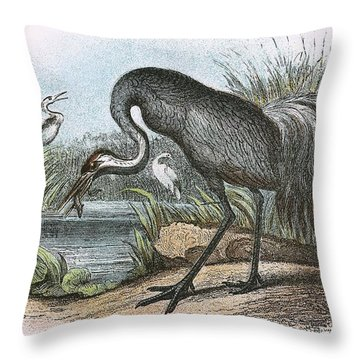 Common Crane Throw Pillow by English School