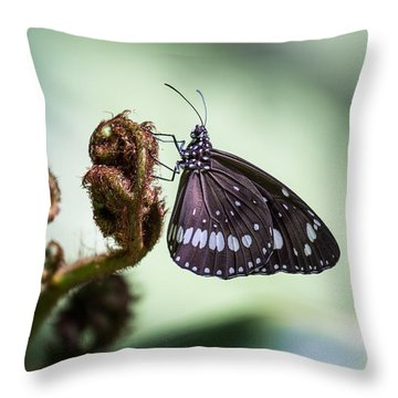 Common Crow Throw Pillow