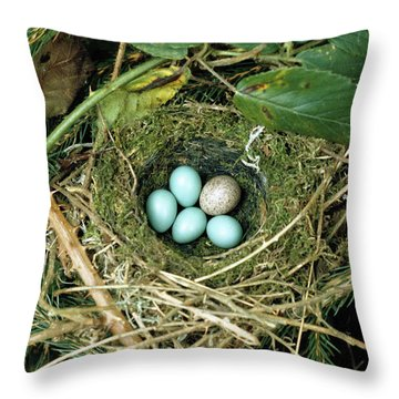 Common Cuckoo Cuculus Canorus Egg Laid Throw Pillow by Jean Hall