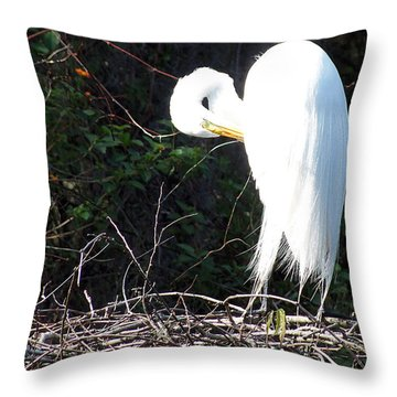 Throw Pillow featuring the photograph Common Egret 001 by Chris Mercer