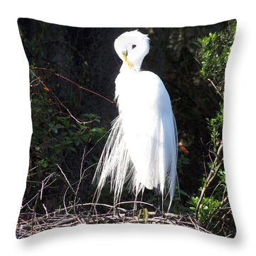 Common Egret 002 Throw Pillow