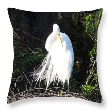 Common Egret 003 Throw Pillow