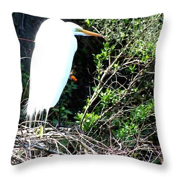 Throw Pillow featuring the photograph Common Egret by Chris Mercer