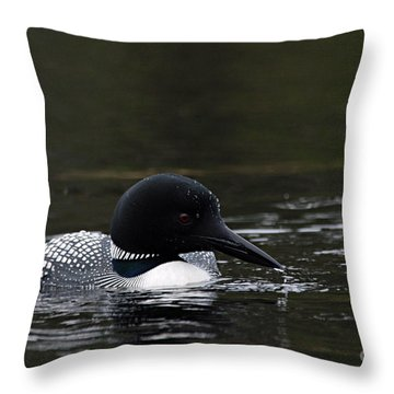 Common Loon 1 Throw Pillow