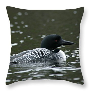 Common Loon 3 Throw Pillow by Larry Ricker