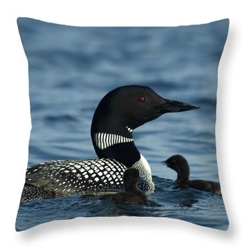 Common Loon Family Throw Pillow by James Peterson