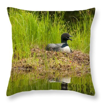 Common Loon Nesting Throw Pillow
