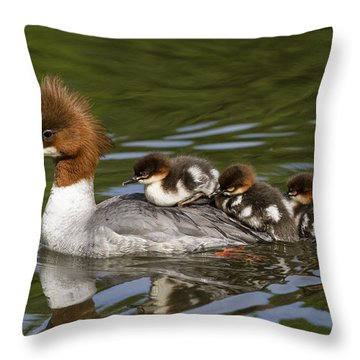 Common Merganser Mother Carrying Chicks Throw Pillow