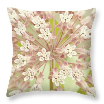 Common Milkweed Throw Pillow