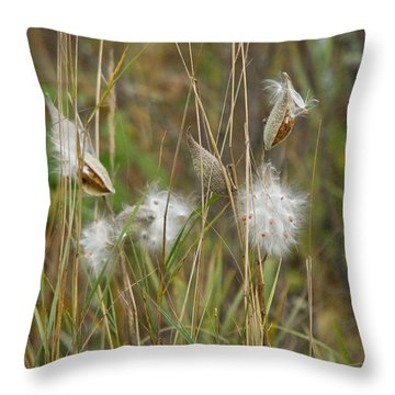 Common Milkweed Throw Pillow by Linda Freshwaters Arndt