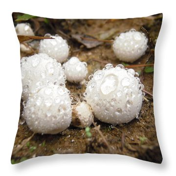 Common Puffball Dewdrop Harvest Throw Pillow